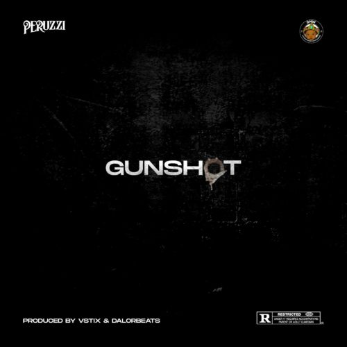 Download Music: Peruzzi – Gunshot