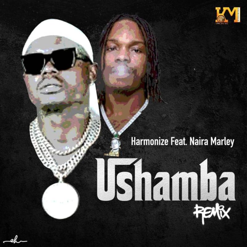 "Download Music: Harmonize – ""Ushamba"" (Remix) ft. Naira Marley"